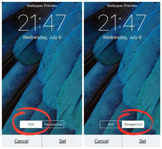 Hidden iPhone Feature