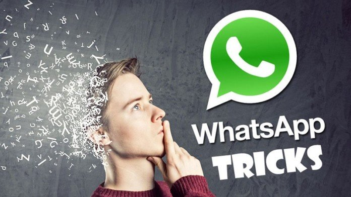 This Is How You Can Use WhatsApp As Search Engine 2016