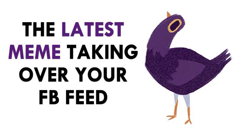 Purple Bird Trending