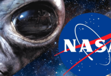 Video From Anonymous Alien Life Evidence From NASA To Be Declare Soon