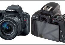 Canon EOS Rebel SL2 DSLR Full Review With Pros And Cons