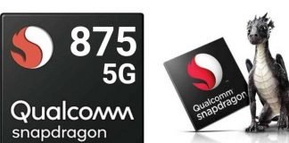 Sbapdragon 875