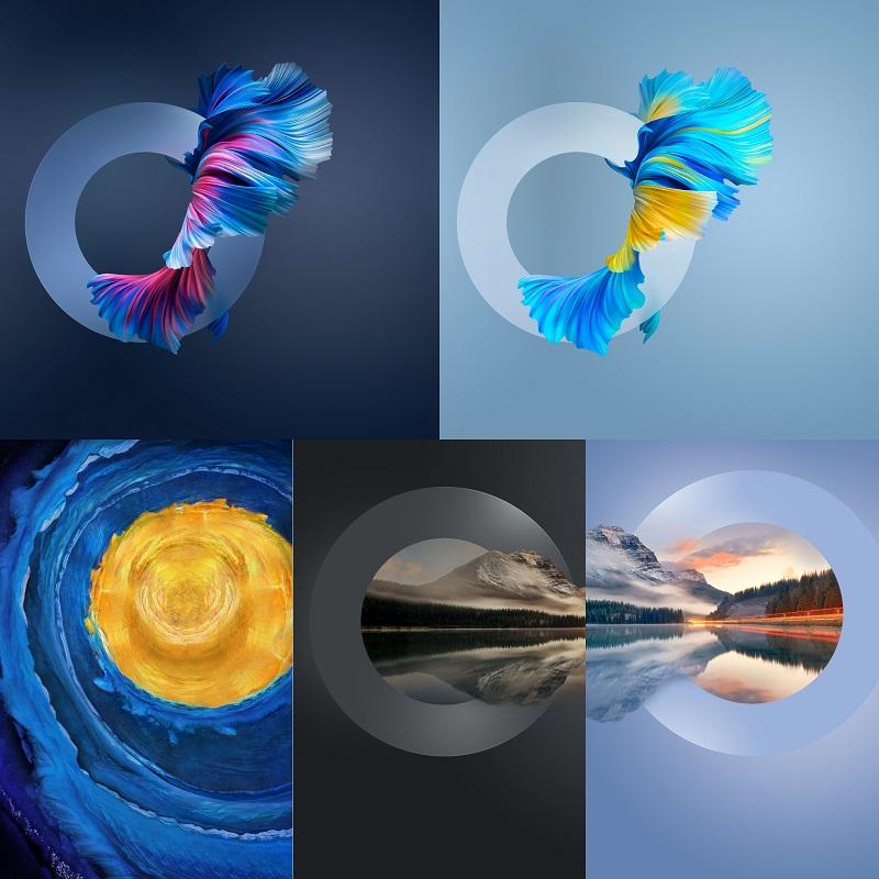 Huawei Mate 40 Series Wallpapers