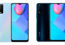 Vivo Y12s Color variants